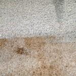 Carpet Cleaning Ellensburg, WA